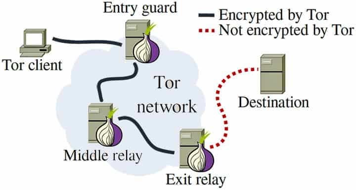 TOR Network Structure