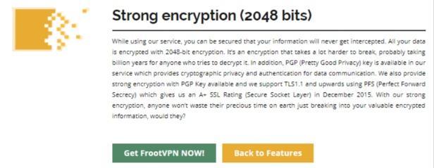 FrootVPN encryption