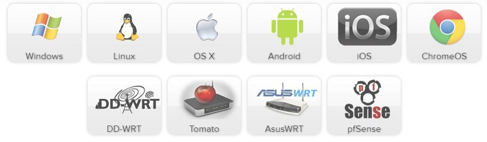 AirVPN VPN access devices