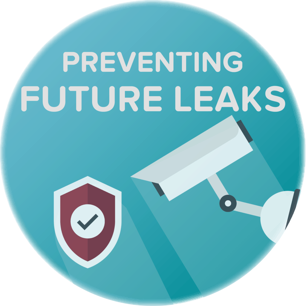 preventing dns vpn leaks