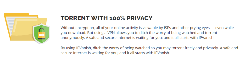 100% Privacy Torrenting