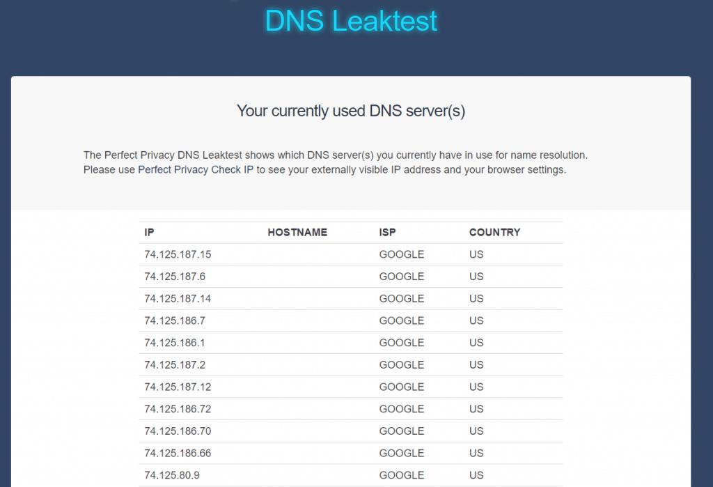 no dns leak found
