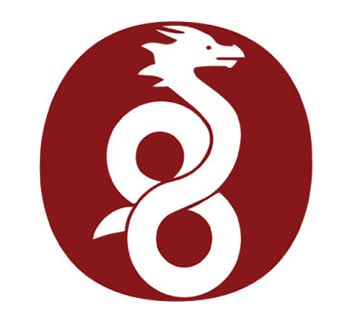 Wireguard VPN Protocol Logo