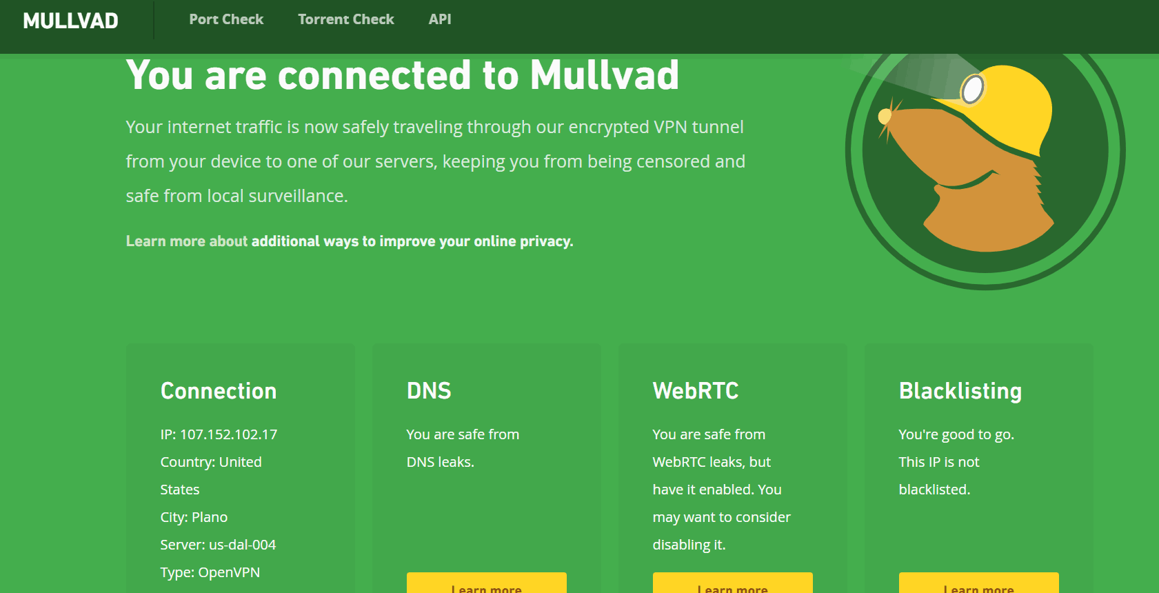 DNS Server Leak Results for Mullvad VPN