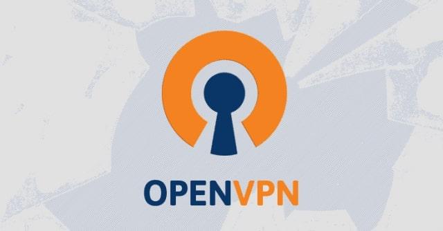 OpenVPN protocol missing